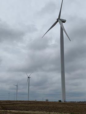 Windmills4