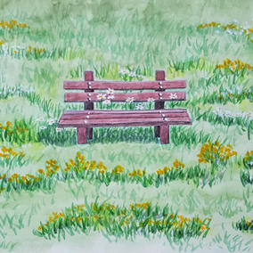 Bench and Daisies