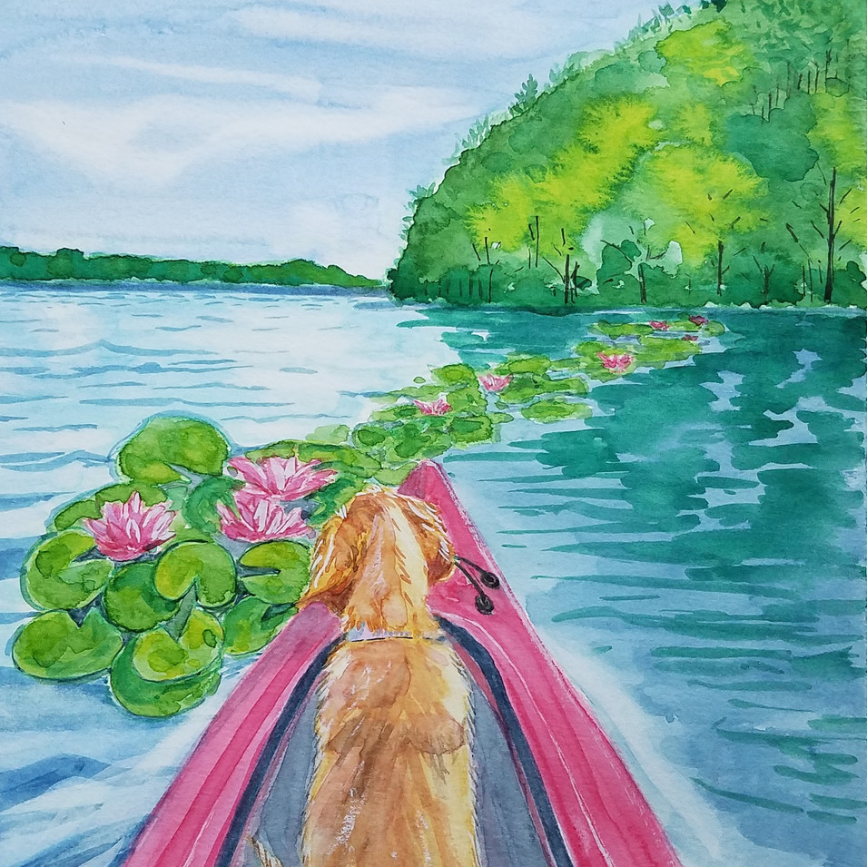 Puppy and water lilies
