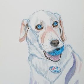 Civic duty VOTE!