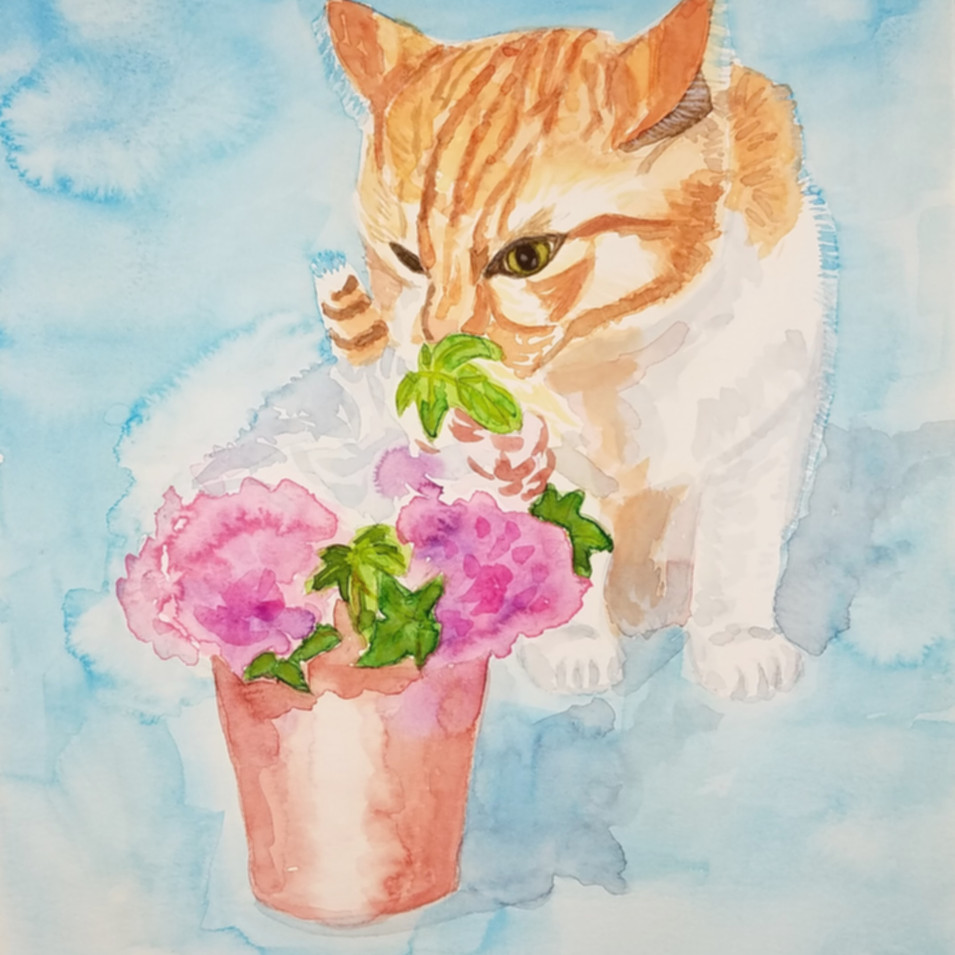 Kitty and flower