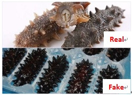 What Can Go Wrong with Sea Cucumbers?