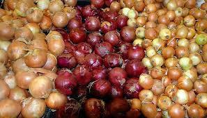 把食品品質安全監管作為市場供應重點