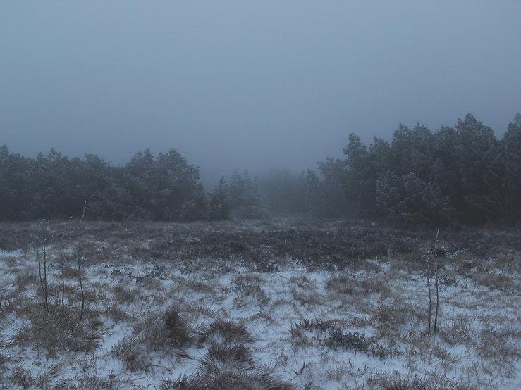 Léonie Zikos - snow winter fog landscape photograph
