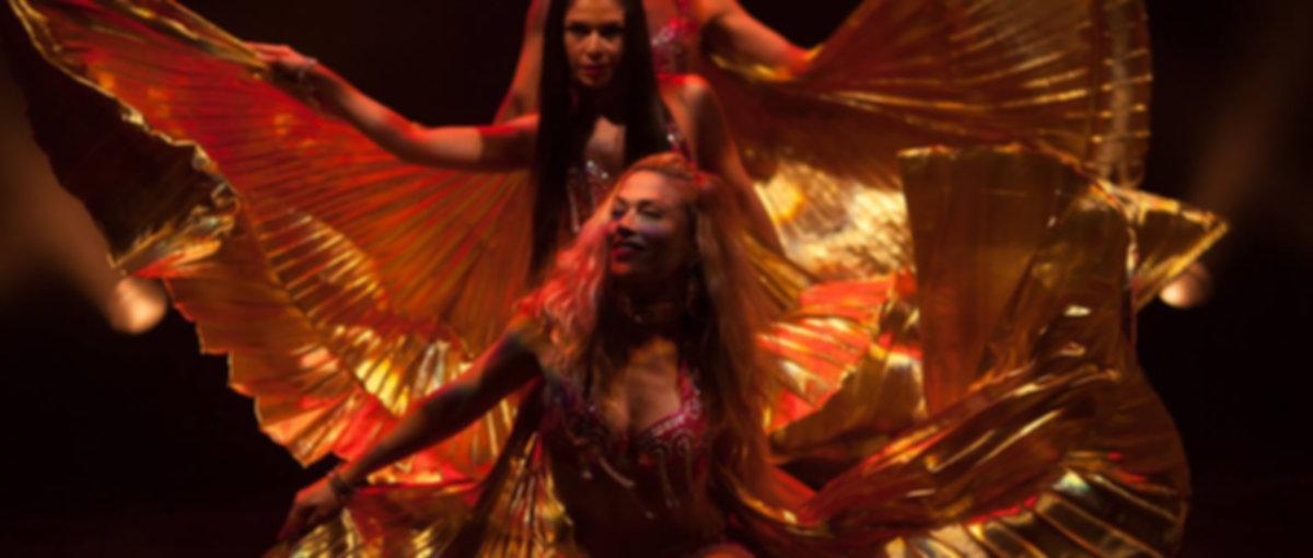 danseuses, danse , spectacles, animations, groupe danseuses, troupe danseurs, compagnie chorégraphe, danses du monde, danses urbaines, danse orientale, lyon , rhone alpes, france