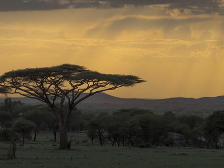 TANZANIA: THE MAINLAND