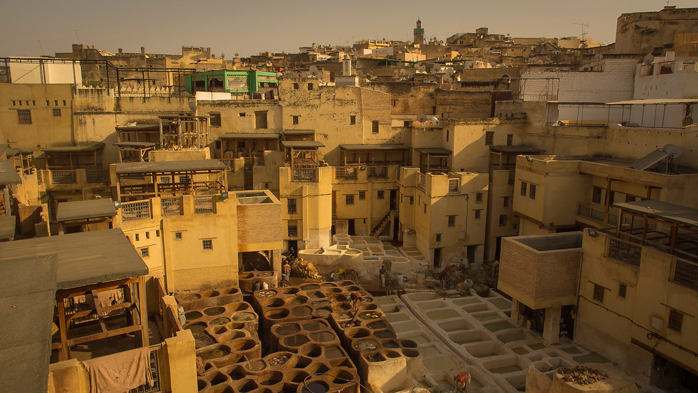famous tanneries in Fes