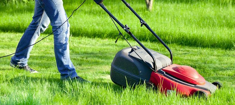 tonte pelouse.jpg
