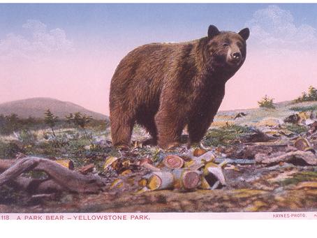 Montana Profile: EcoPioneer Jim Evanoff