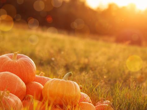 O C T O B E R ... Pumpkin and Chai, oh my!