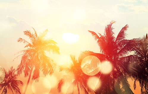 Tropical beach summer background with pa