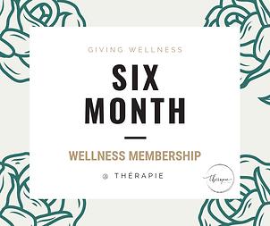 six month wellness 2019-3.png