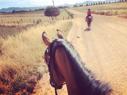 2 hour horse riding trips