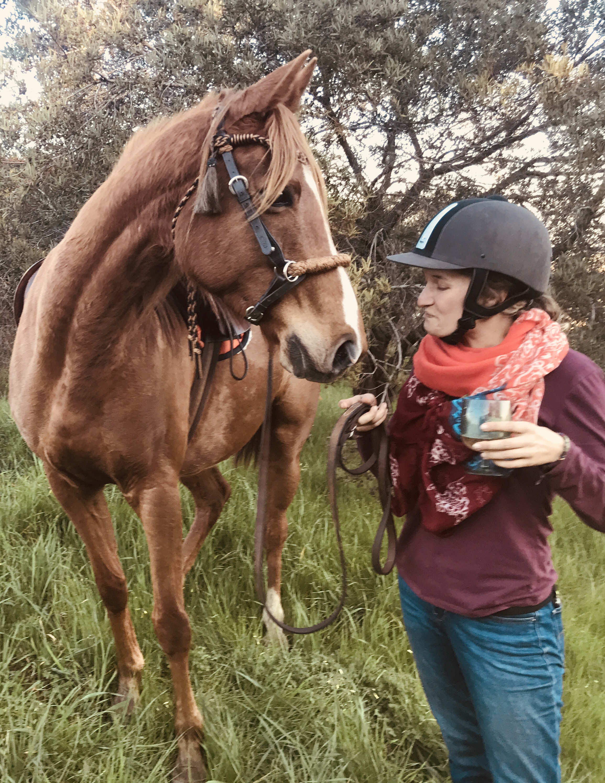 Horse Riding in Stellenbosch