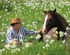 Stellenbosch Horse Riding at Pink Geranium