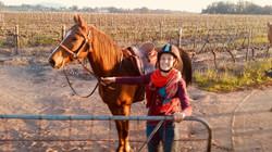 Full Day Wine tour on Horseback