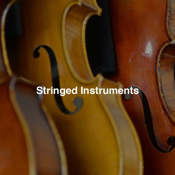 stringed
