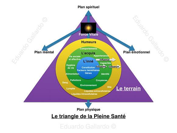 Le_terrain_et_la_pleine_santé.001.jpg