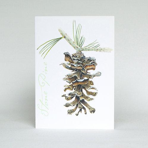 Stone Pine Greeting Card