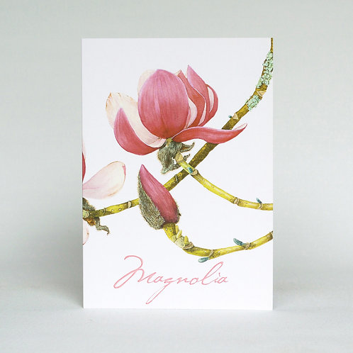 Magnolia Greeting Card Portrait