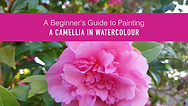 Camellia in watercolour Cover.png