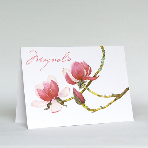 Magnolia Greeting Card Landscape