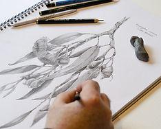 graphite 6.jpg