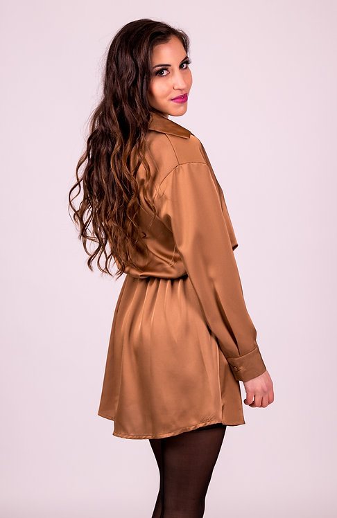 Satin Bronze Blouse Dress