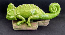 Chameleon by Sylvia