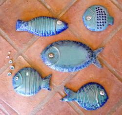 Fish by Liz