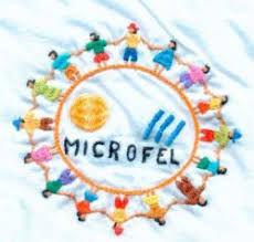 11 microfel.jpg