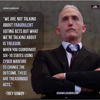 trey gowdy.png