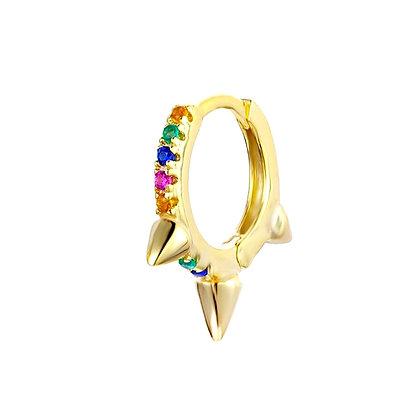 Rainbow Anura Hoops