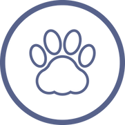 Web Icons-Pet Policy_edited.png