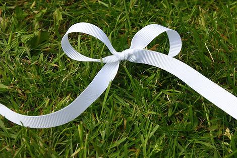 White-Grosgrain-Ribbon-600.jpg