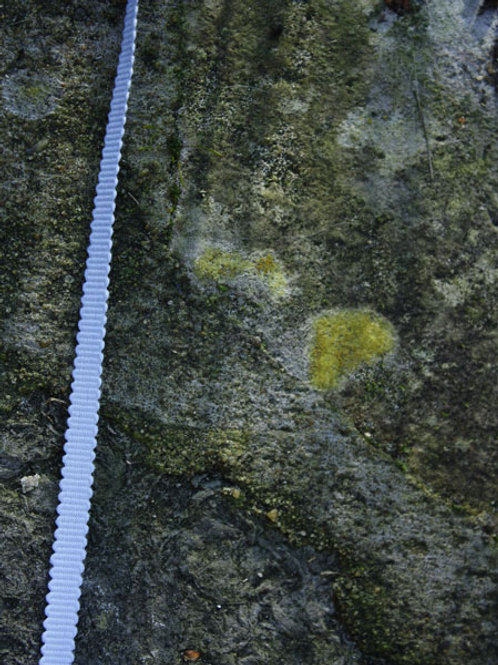 Blue Cotton Grosgrain
