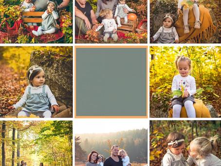 Bilder im Herbst - einfach goldig!