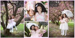 Spring Cherry Blossom Session