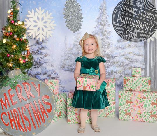 Holiday Portraits!