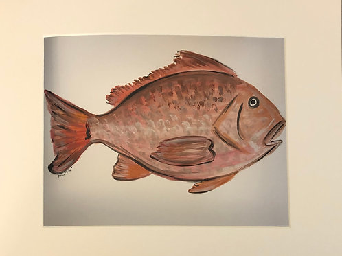 Red Snapper Print matted