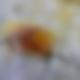 Bildschirmfoto 2019-09-20 um 17.31.14.pn