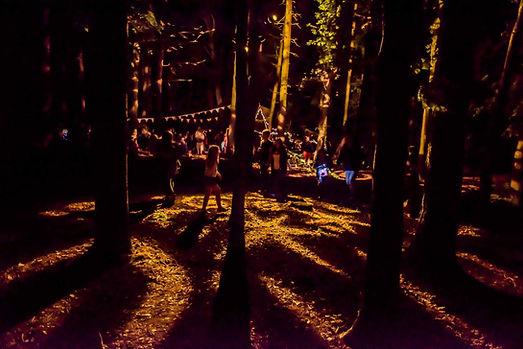 Festival Lighting.JPG