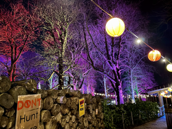 Knowsley Enchanted 2020