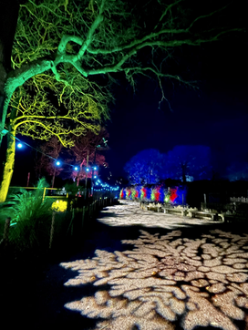 Knowlsy Enchanted 2020 Walkway