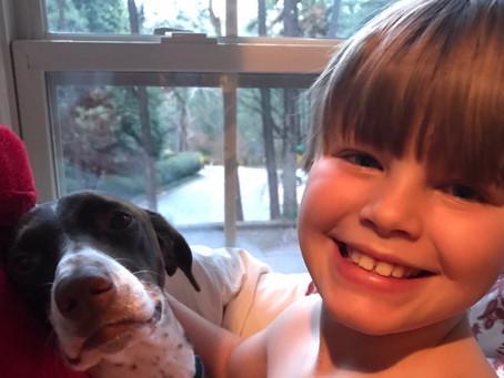 How Pet Adoption Teaches Love & Rescue
