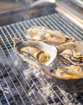 Oyster close up.jpg