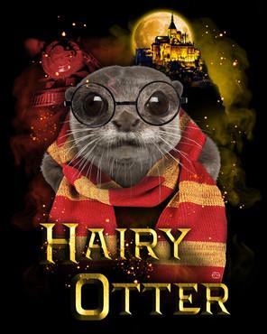 Hairy-Otter.jpg
