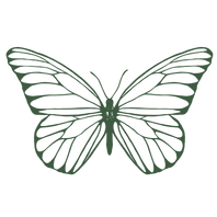 Papillon Visuals Wedding Photographer Emerald.png
