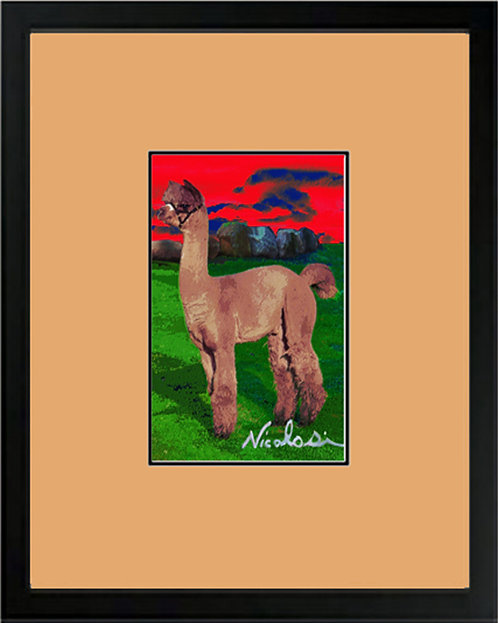 "-----""Alpaca Shades of Gray""-----  Signed ""Mini"" Art Print"