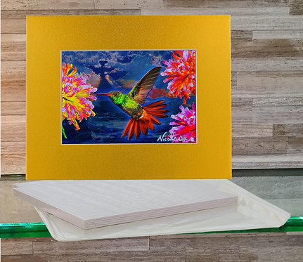 "Hummingbird ""Anna's Song""  -  Signed ""Mini"" Art Print"